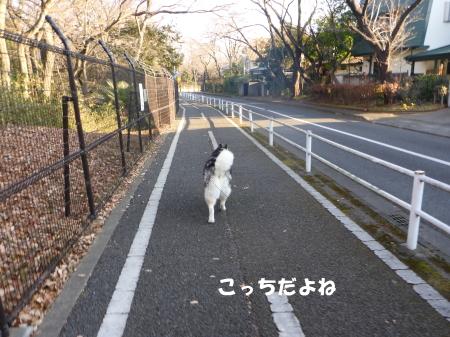 20140126_3.jpg