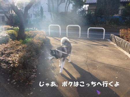 20140126_4.jpg