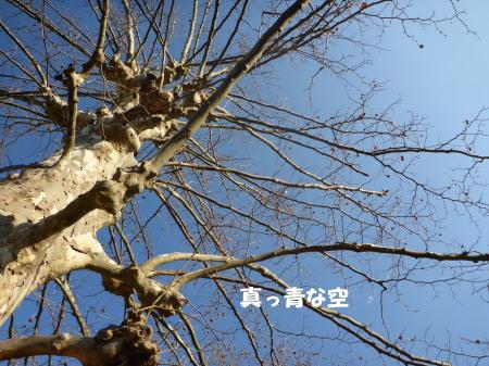 20140126_5.jpg