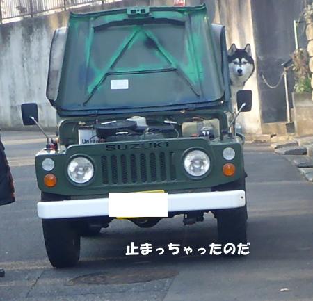 20140126_7.jpg