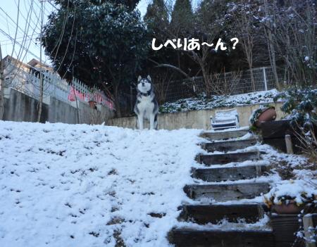20140205_7.jpg