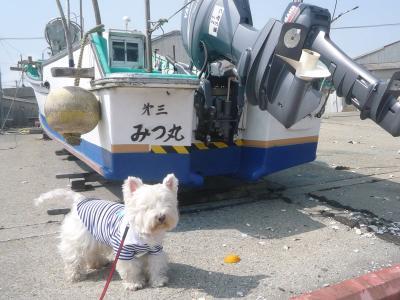 gyokoumodaisuki44.jpg