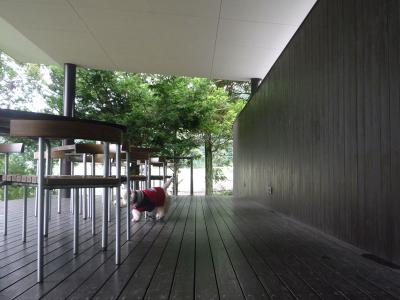museelevent1.jpg