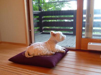 natuyasumihanonbirimatarine1.jpg