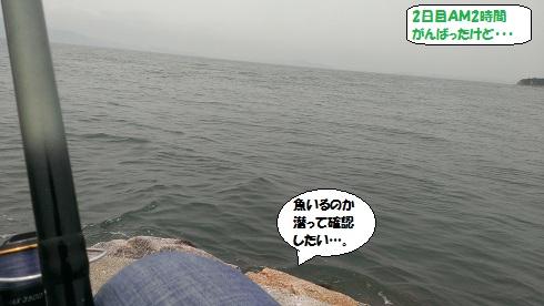 2013060905.jpg