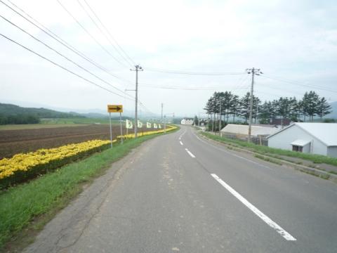 cP1110140.jpg