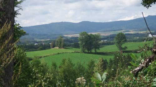 どんぐり山からの美瑛の丘