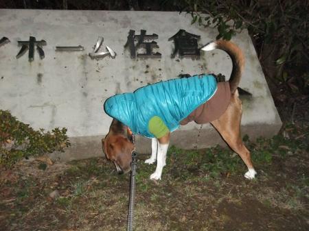20130108夜散歩03