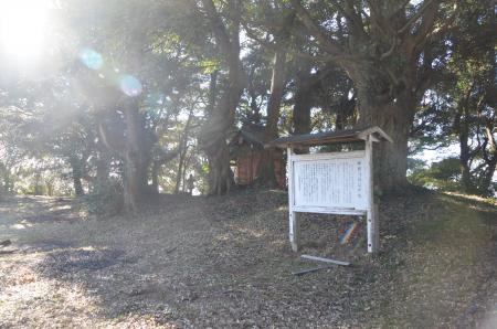20130110阿波崎城址14