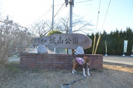 20130110木原城址32