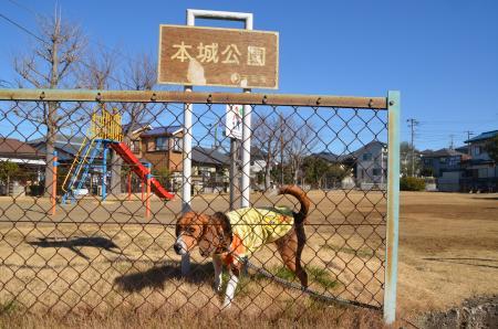 20130111小弓城址02