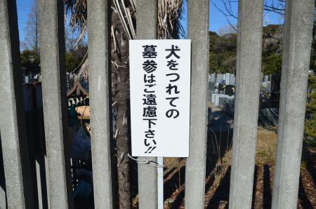 20130111小弓城址10