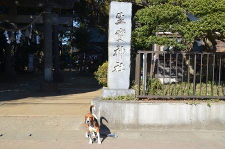 20130111小弓城址19