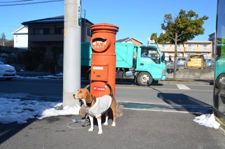 20130118丸ポスト散歩20