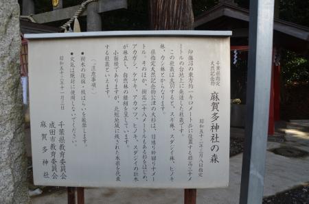 20130123麻賀多神社(成田市台方)02