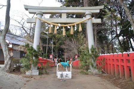 麻賀多神社 成田船形03