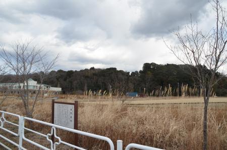20130126 飯野暮雪10