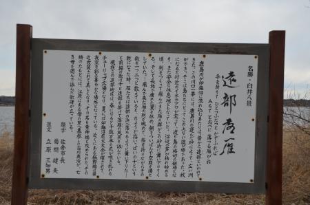 20130126 遠部落雁01
