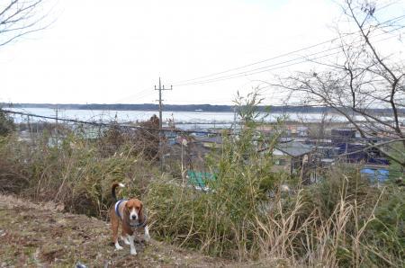 20130126 洲崎晴嵐06