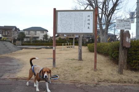 20130126 洲崎晴嵐02