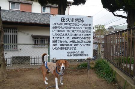20130126 田久里砦03