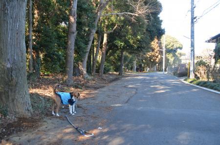20130127麻賀多神社 岩名01