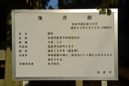 20130202麻賀多神社大蛇03