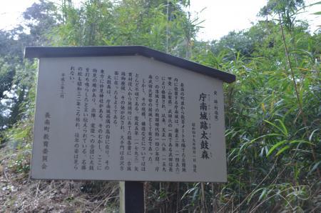 20130203庁南城址02