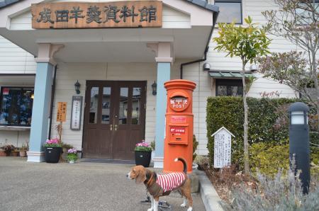 20130204成田丸ポスト24