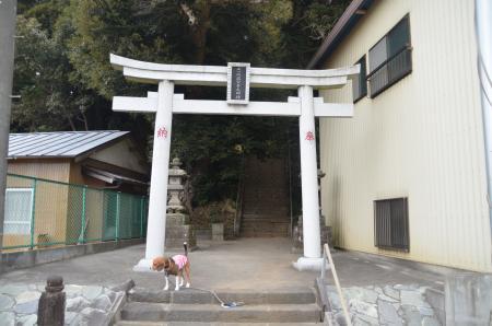 20130204麻賀多神社 富里新橋02