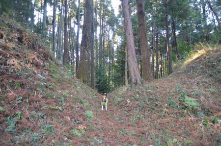 20130207田間城址20