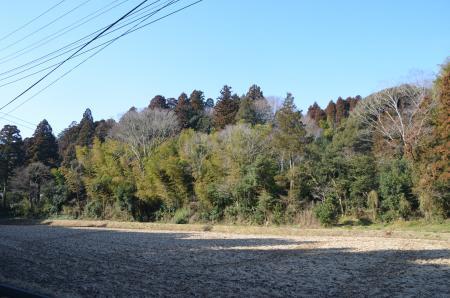 20130210本矢作城址10