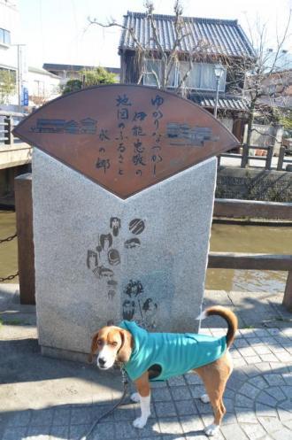 20130210佐原ひなめぐり17
