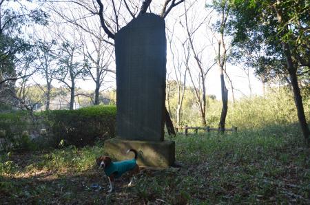 20130211小見川城址14