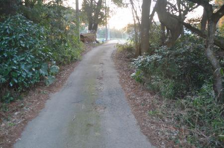 20130211森山城址26
