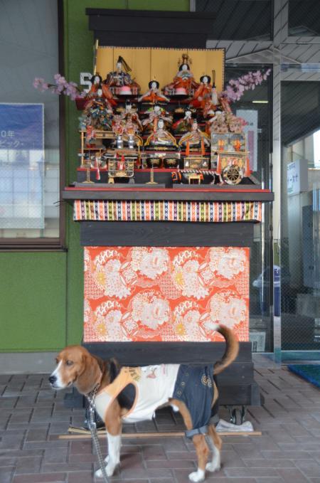 20130223石岡雛巡り41