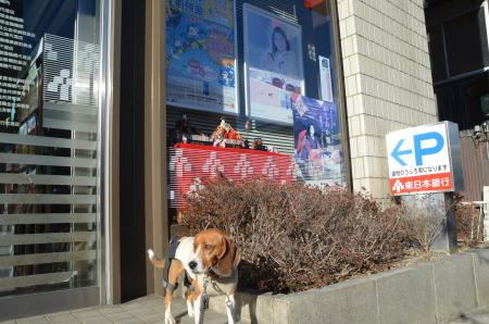 20130223石岡雛巡り39
