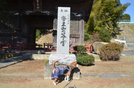 20130224江戸崎八景 医王山の暮雪01