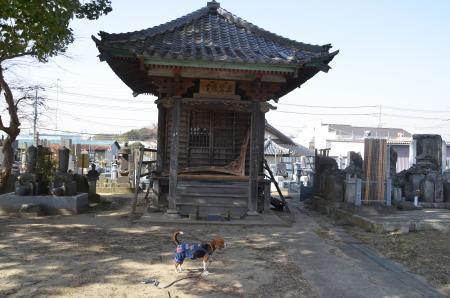 20130224江戸崎八景 羅漢山の夕照06