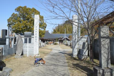 20130224江戸崎八景 羅漢山の夕照03