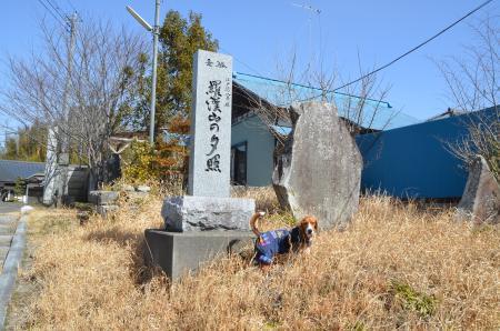 20130224江戸崎八景 羅漢山の夕照02