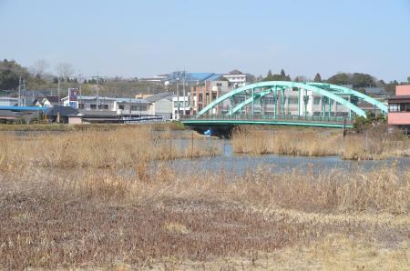 20130224江戸崎八景 高田の落雁05