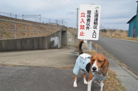 20130303木田余城址04