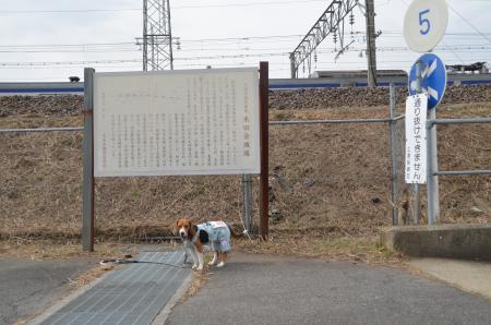 20130303木田余城址02