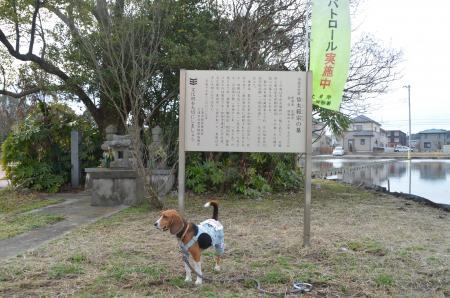 20130303木田余城址12