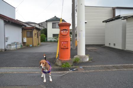 20130411鎌ヶ谷丸ポスト12