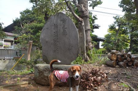 201230414実籾城址05