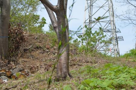 201230414実籾城址10