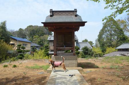 20130414摩賀多神社 八千代02