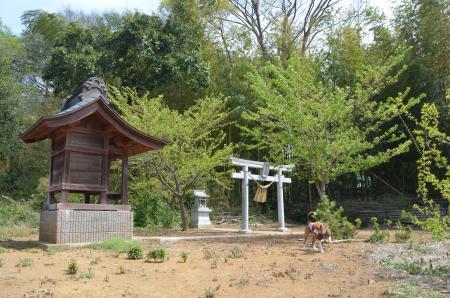 20130414摩賀多神社 八千代09